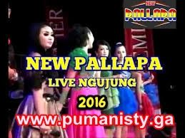 New Pallapa Live Ngujung Rembang 2016 | PUMANISTY