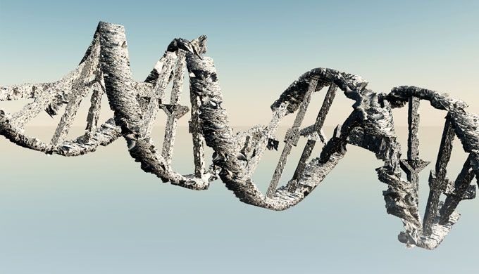 Beneficial mutations real or imaginary part 1 - creation.com