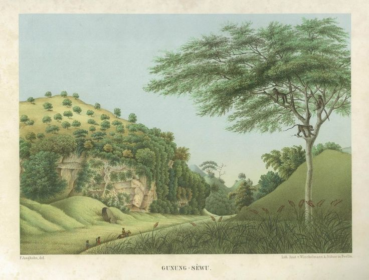 Gunung – Sewu, Junghuhn 1853 A rare and beautiful coloured lithograph of Gunung – Sewu, Java. The print is from one of two German editions of the drawing of Franz Wilhelm Junghuhn (1809-1864), a German...