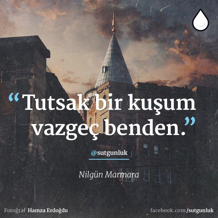 Tutsak bir kuşum vazgeç benden. - Nilgün Marmara (Kaynak: Facebook - Günlük Süt) #sözler #anlamlısözler #güzelsözler #manalısözler #özlüsözler #alıntı #alıntılar #alıntıdır #alıntısözler #şiir #edebiyat