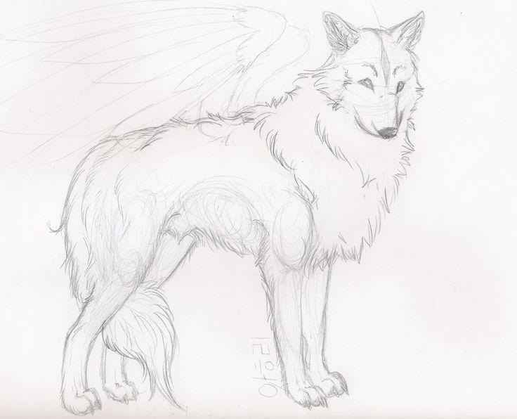 wolf sketch | Wolf Sketch by ~StarlietWolf on deviantART