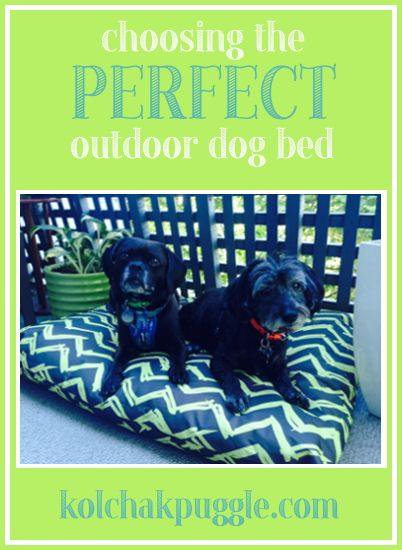 When you spend as much time outdoors as we do, it's important to have a great outdoor dog bed that is not only comfortable, but well made enough to stand up to the elements. How do you know which beds are worth your money and which won't last the season? We're sharing our tips for choosing the perfect outdoor dog bed.