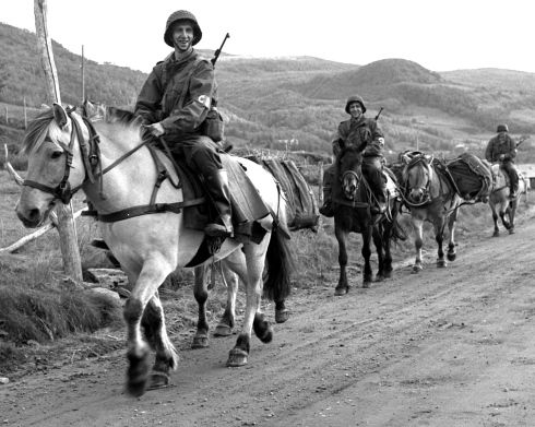 NATO exercise, 1954 | Red Grandy ©Stars and Stripes |  Norway, September 1954: Three members of the Norwegian Army's Horseback Company 2, taking part in NATO's Polar Mist exercise far above the Arctic Circle, utilize a type of oat-driven transportation designed to reach difficult mountain positions.