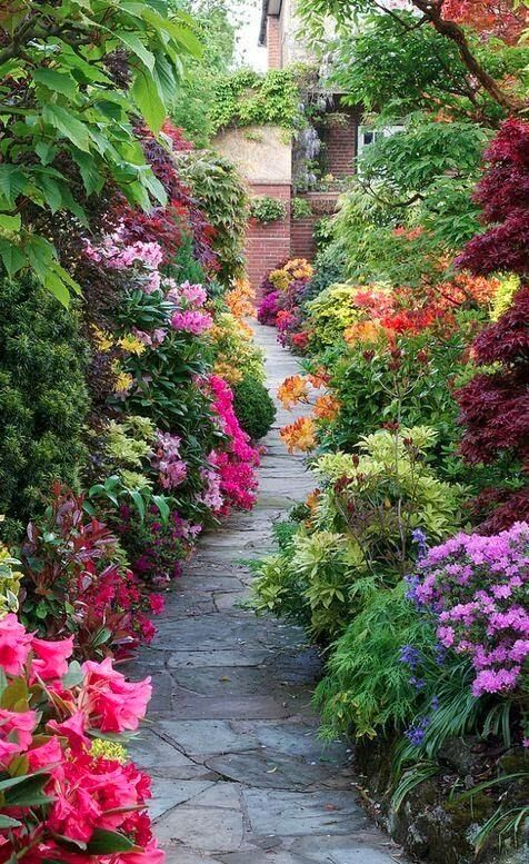 best garden heaven images on, Natural flower