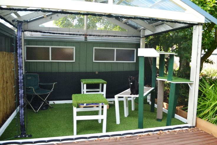 Main enclosure.    Transformed from small pre-decked entertainment area.  Cat netting used on all four sides and roof.  Tensioned wire along top to hold sides and roof by cable ties.  Bottom of netting screwed or nailed to installed baseboards.    Synthetic grass laid over decking with weed mat.  Furniture built out of treated pine and covered in off cuts of synthetic grass and carpet tiles.  Scratching post on main tower covered in an offcut of carpet.