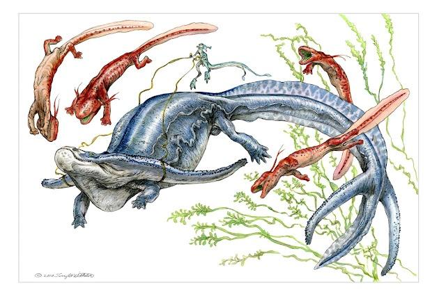 creature design by Terryl Whitlatch