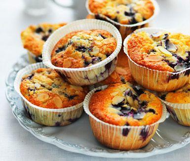 Amerikanska blåbärsmuffins. (American blueberry muffins.)