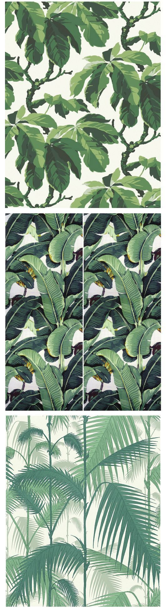 Boråstapeters Oxford, Martinique's Beverly Hills Wallpaper och Cole & Sons Palm Jungle