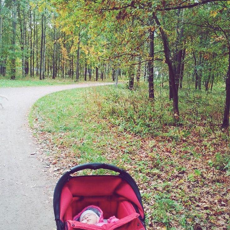 Einmal mit Kinderwagen durch den Wald, dann an der Straße entlang zu einer bekannten Familie wandern. Ohne die Eltern. Ohne sich abzumelden