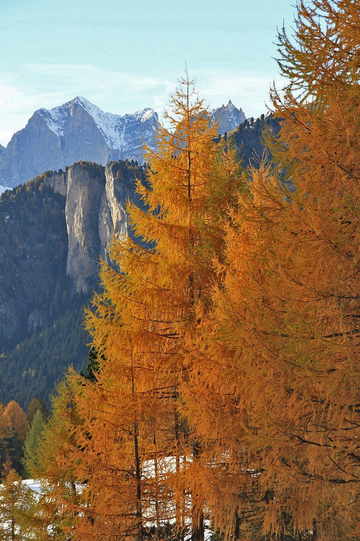 Val di Fassa autumn colors