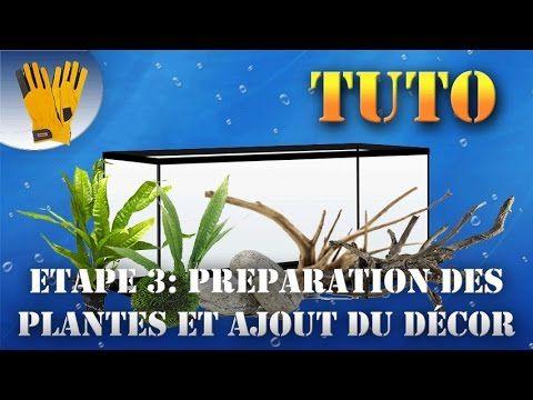 Préparation des plantes et ajout du décor - Aquarium 80L Tuto #3  #ajout #aquarium #decor
