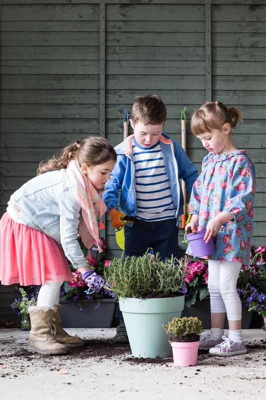 It's time to entice the kids away from the telly and in to the outdoors. What better way to do it than with our new range of colourful gardening tools and gloves for little hands.