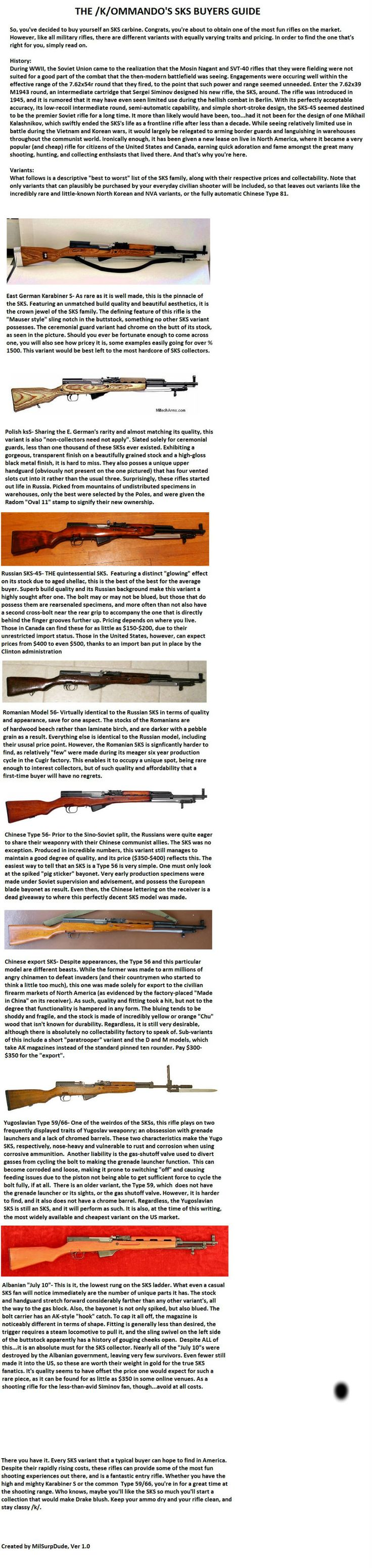 SKS Buyer's GUide