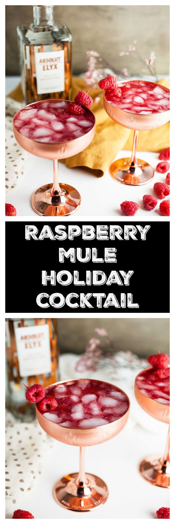 This Raspberry Mule Holiday Cocktail is the perfect way to celebrate the holidays! This fun and festive drink is made with vodka, lime juice, ginger beer, and a homemade raspberry cordial. This Raspberry Mule is a variation on the more classic Moscow Mule. It's a great easy recipe for a holiday party, New Year's, or anytime. #ad #coppermakesitbetter #raspberrymule #cocktails @absolutelyx
