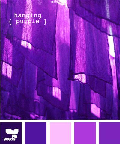 hanging purpleColours Inspiration, Colors Purple, Colors Palette'S Hanging, Design Seeds, Blurb Ebook, Hanging Purple, Colors Palettes, Colours Palettes, Colors Inspiration