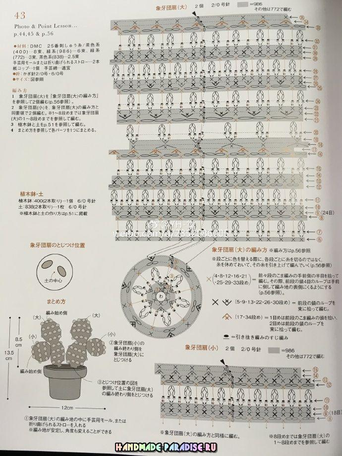 Схемы вязания крючком кактусов и суккулентов