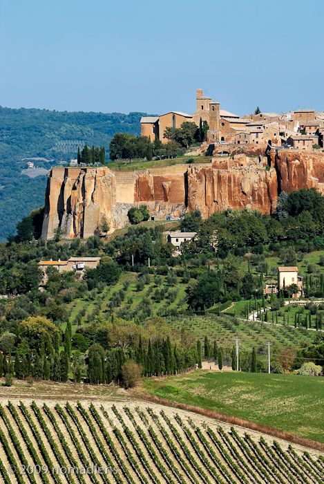 Orvieto, with vineyards beneath the town - Umbria, Italy