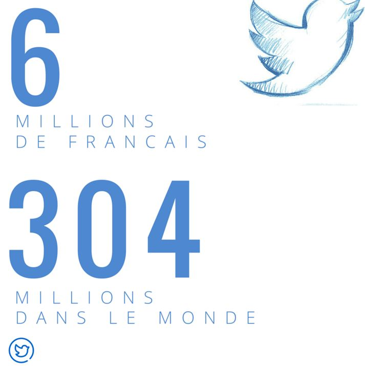 Twitter France #community #manager #image #visuel #cm #socialmedia #facebook #twitter #Twitter #followers #france #infographie #infographic