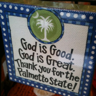 : Dorm Room, Southern Charms, Canvas, Carolina Girls, Palmetto States, House, U.S. States, South Carolina, Crafts