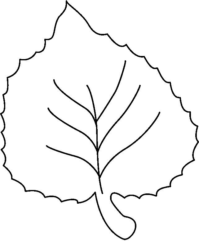 Tree Clipart Black And White 40476 Leaves Clip Art