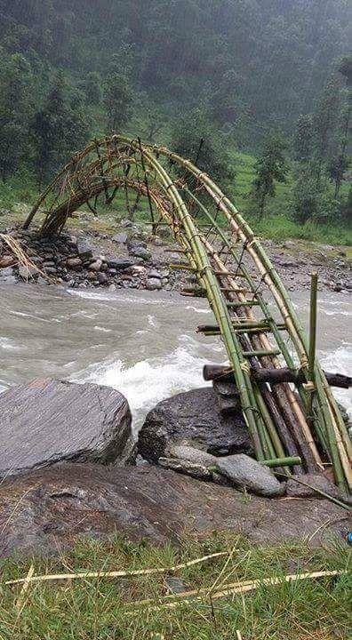 Path | 道路 | Chemin | путь | Sentiero | Camino | Dōro | Pasaje | проезд | Bamboo bridge