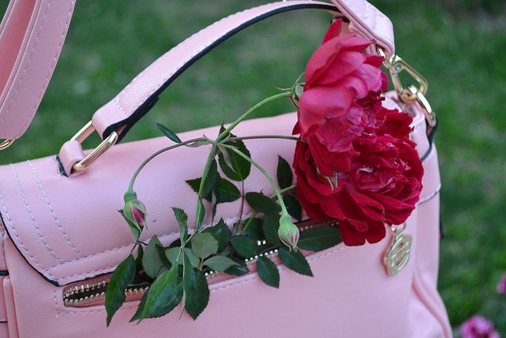 Something to remind me that spring is coming! Red shoulder bag from TBDress.com and roses from our garden!