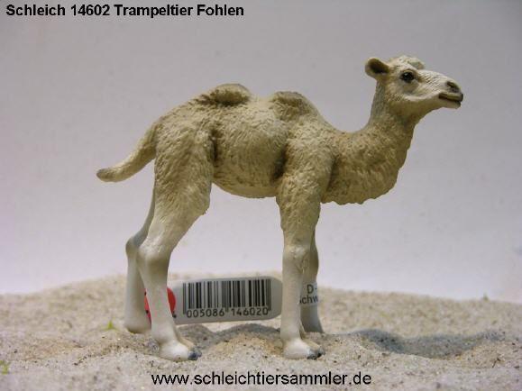 Schleich 14602 Trampeltier Fohlen, 2009-heute