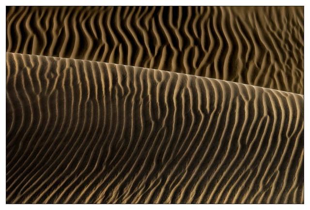 Zebra Dune