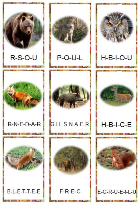 Favorit Les 11 meilleures images du tableau images foret animaux sur  JI06