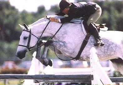 "Rox Dene ""Hunter Horse of the Century"" (b. 1986)"