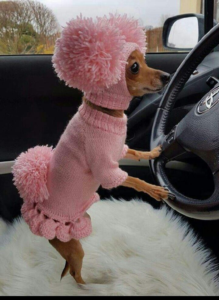 Yes, I'm cold & I'm driving...
