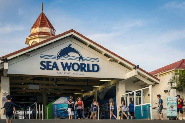Sea World: Opened in 1971, Sea World is a marine-mammal based theme park located right at the heart of Gold Coast.