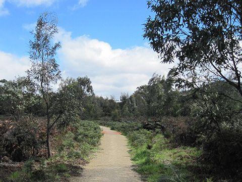 Lauderdale Wetlands Track | Greater Hobart Trails