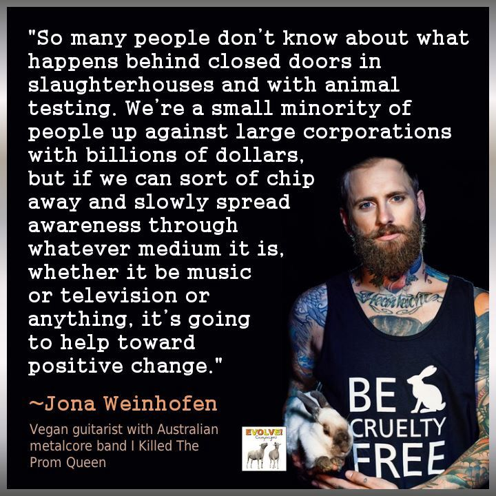 Animal Abuse Quotes By Famous People: 279 Best Vegan-Eco Inspiration Images On Pinterest