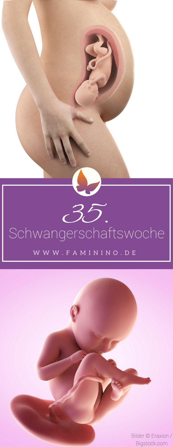 35. SSW (Schwangerschaftswoche): Dein Baby, dein Körper, Beschwerden und mehr