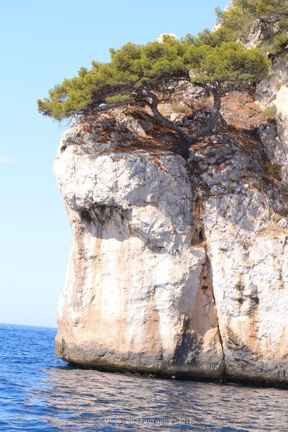 Le spettacolari calanques di Marsiglia...