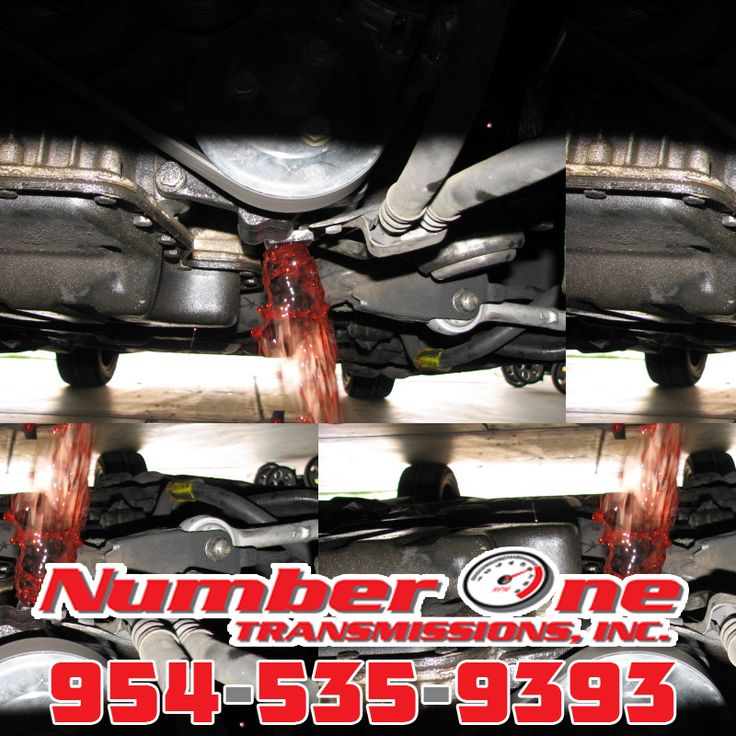 954-535-9393 Call Number One Transmissions Hollywood Beach FL. The Friendliest Transmission Shop in Hollywood Beach FL. http://transmissionsfortlauderdale.com/transmission-shop-hollywood-beach/ #transmissionsHollywoodBeach #newtransmissionsHollywoodBeach #rebuilttransmissionsHollywoodBeach #transmissionshopHollywoodBeach Number 1 Transmissions Number One Transmissions 2091 NW 29th St Oakland Park, FL 33311 Repairs@TransmissionsFortLauderdale.com