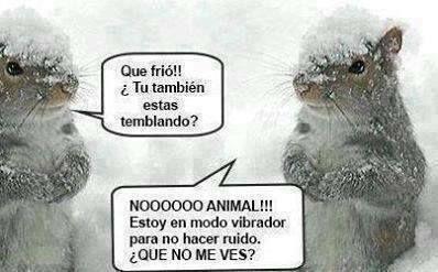 Frío !!!!