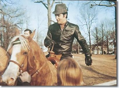 Elvis & his horse Rising Sun