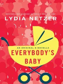 Bookblog of the Bristol Library: Everybody's Baby by Lydia Netzer