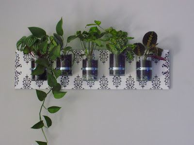 DIY Wall Mounted Planter. This would be great for bringing living things into the classroom.