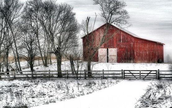 barns: Beautiful Barns, Winter Barn, Winter Wonderland, Snow, Country Life, Photo, Red Barns, Country Barns, Old Barns