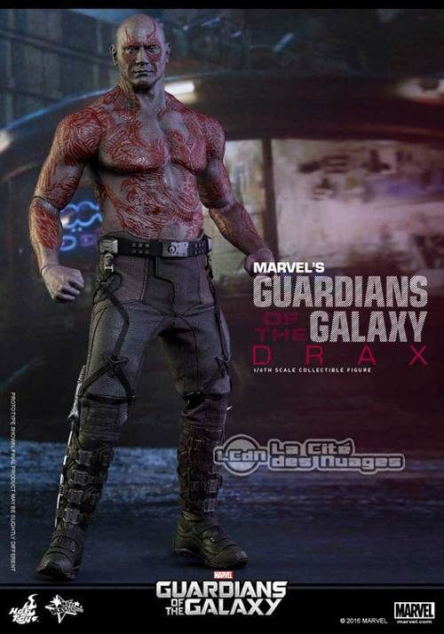 Hot Toys MMS355 Guardians of the Galaxy Drax le Destructeur ( Dave Bautista ) 1/6 Collectible