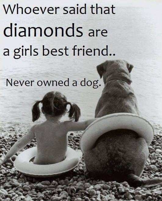 if it came down to a diamond or a dog, I'd take the dog :-)