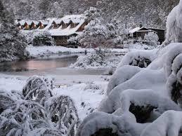 snow photos in Tasmania today - Google Search