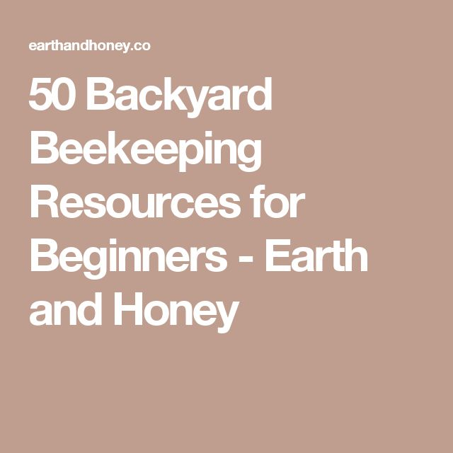 50 Backyard Beekeeping Resources for Beginners - Earth and Honey