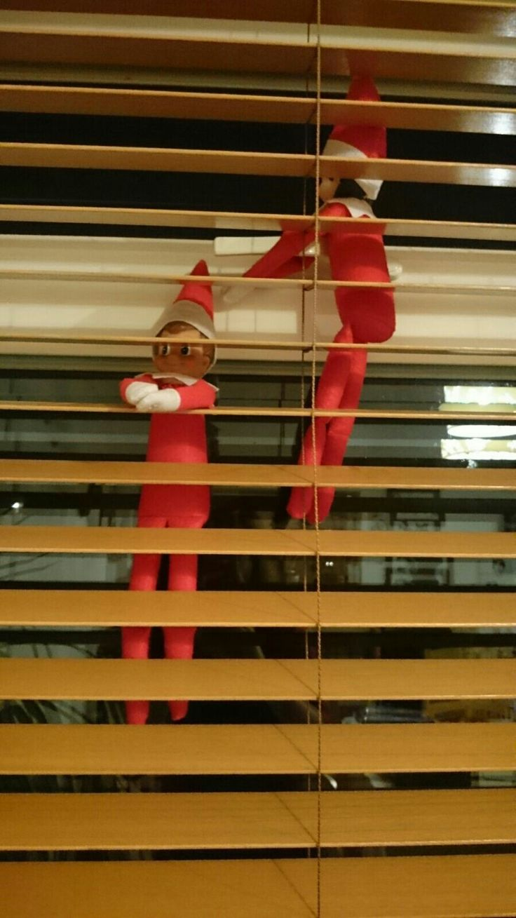 Elf on the Shelf Day 24: elf out