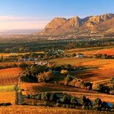 On my bucket list = South Africa   This picture is the Constantia Wine Region. Done got the T shirt