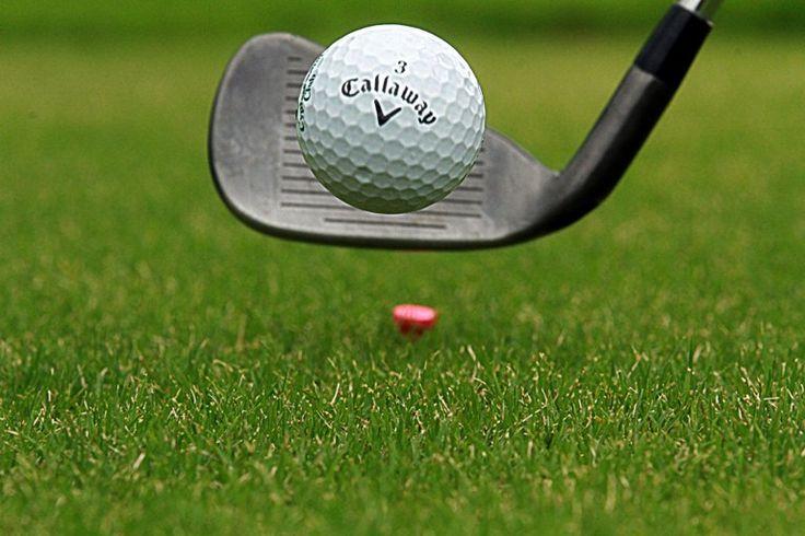 5º Torneo de Golf Foto: Edgar Montelongo