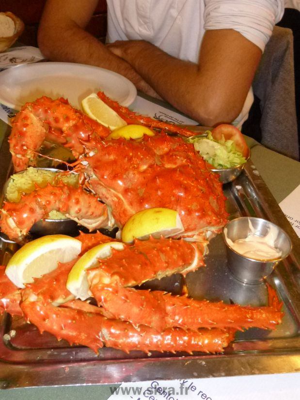 Crabe royal de Patagonie pêché en terre de feu, Ushuaia